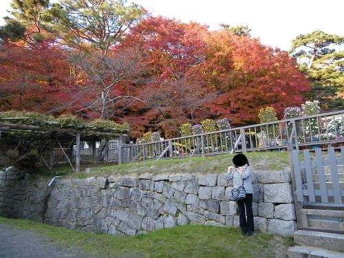 2013年11月17日かわせみ 施設編1 (4).jpg